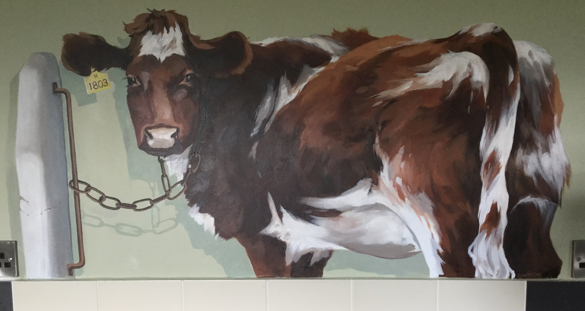 Cow on the kitchen wall, which is a converted barn